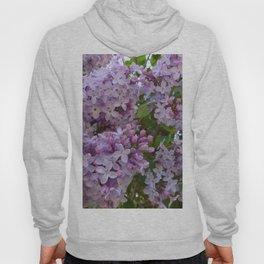 Lilac ~ Periwinkle Hoody