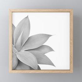 Agave Finesse #6 #tropical #decor #art #society6 Framed Mini Art Print