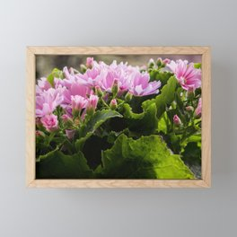 Heart chakra opening with pink spring flowers in bloom Framed Mini Art Print