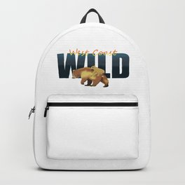 Momma bear and cub at West Coast Backpack