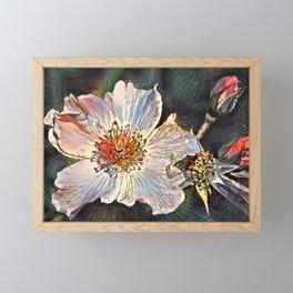 Flower of Asclepius. Framed Mini Art Print