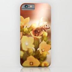 Honey herder 2 iPhone 6s Slim Case