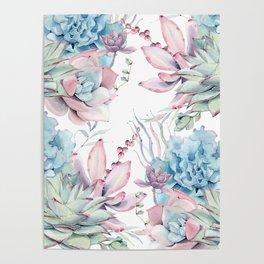 Pretty Pastel Succulents Garden 2 Poster