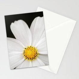 Daisy Drama - Flower Photography Stationery Cards