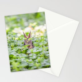 Itty Bitty Baby Bunny Stationery Cards