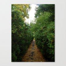 A Path Worth Taking Canvas Print