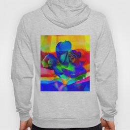 Rose Playing with Textures Hoody