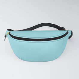 Tanager Turquoise Fanny Pack