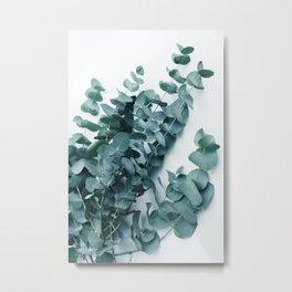 Teal Eucalyptus Metal Print