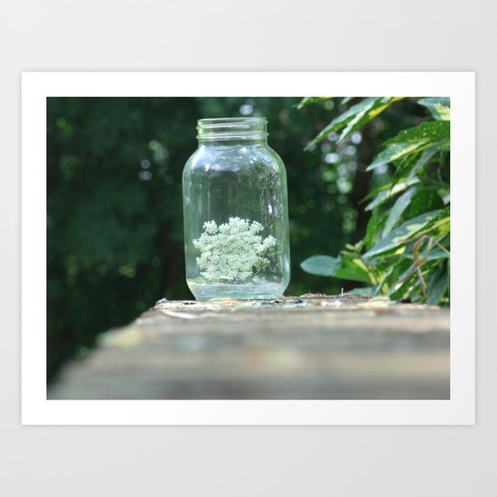 Queen Anne's Lace/Jar w/ bokeh Art Print