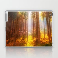 Sunshine forest Laptop & iPad Skin