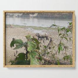 Wild Rhino - Chitwan National Park, Nepal Serving Tray