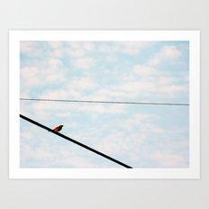Song Bird 3 Art Print