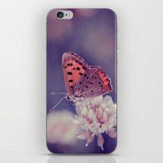 Tiny Beauty iPhone & iPod Skin