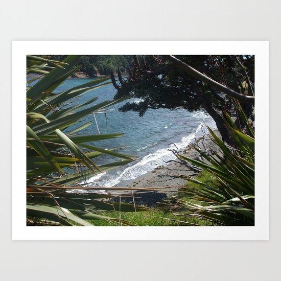 Goat Island New Zealand  Art Print