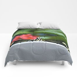 Hello There Flutterby Comforters