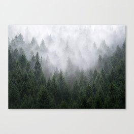 Home Is A Feeling Canvas Print
