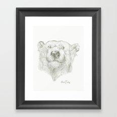 A Polar Bear  Framed Art Print