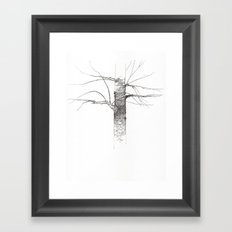 Sweet Birch Framed Art Print