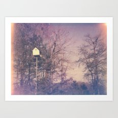 Bird House Polaroid Art Print