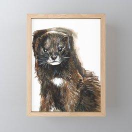 European Mink Framed Mini Art Print