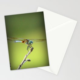 Odonata Stationery Cards