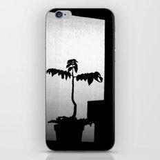 Planta iPhone & iPod Skin