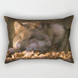 A wolf lying in the evening sun Rectangular Pillow