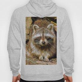 Extraordinary Animals - Raccoon Hoody