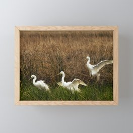 Egret Landing Framed Mini Art Print