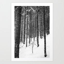 Frost V Art Print