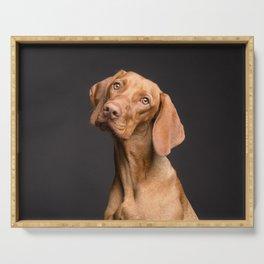 Beagle Serving Tray
