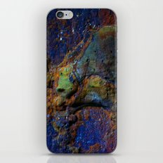 Colorful Earth iPhone & iPod Skin