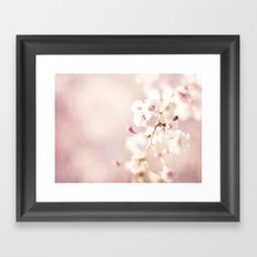 SWEET PINK BLOSSOMS Framed Art Print