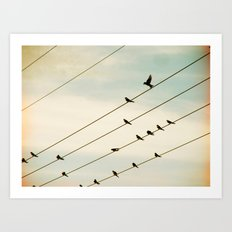 Birds & Lines #1 Art Print