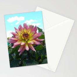 Pink Dahlia Stationery Cards