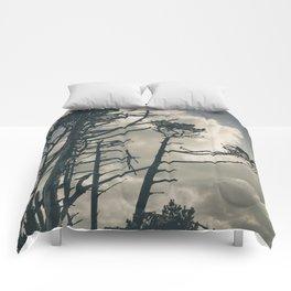 Pines 1 Comforters