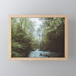 Peaceful Forest, Green Trees and Creek, Relaxing Water Sounds Framed Mini Art Print