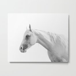 White Horse in Black and White Metal Print