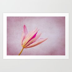 introverted Art Print