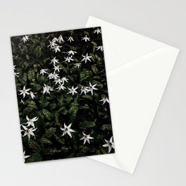 White Fawn Lilies; Open Your Heart Stationery Cards