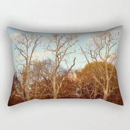 Treptow I Rectangular Pillow