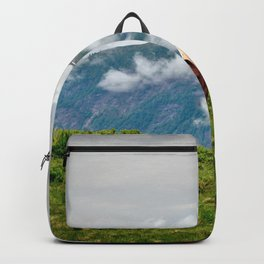 Horses Meadow Mountains landscape Backpack