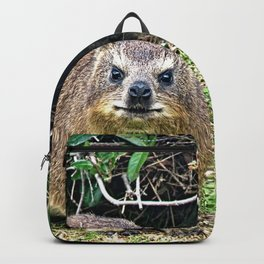 Cute Rock Hyrax Dassie Table Mountain, South Africa Backpack