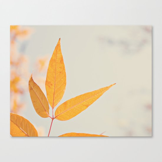 Autumn Three Canvas Print