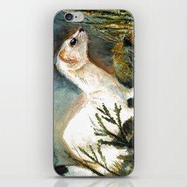 Winter stoat watercolor iPhone Skin