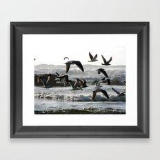 Take Flight Framed Art Print