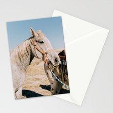 Desert Equestrian Stationery Cards