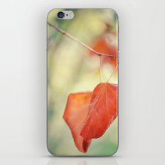 If You Forget Me iPhone & iPod Skin
