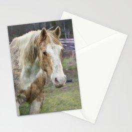 Tripper and Dakota Stationery Cards